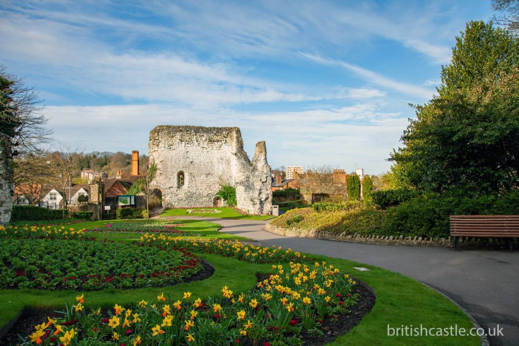 Guildford Castle in spring with daffodils in the foreground